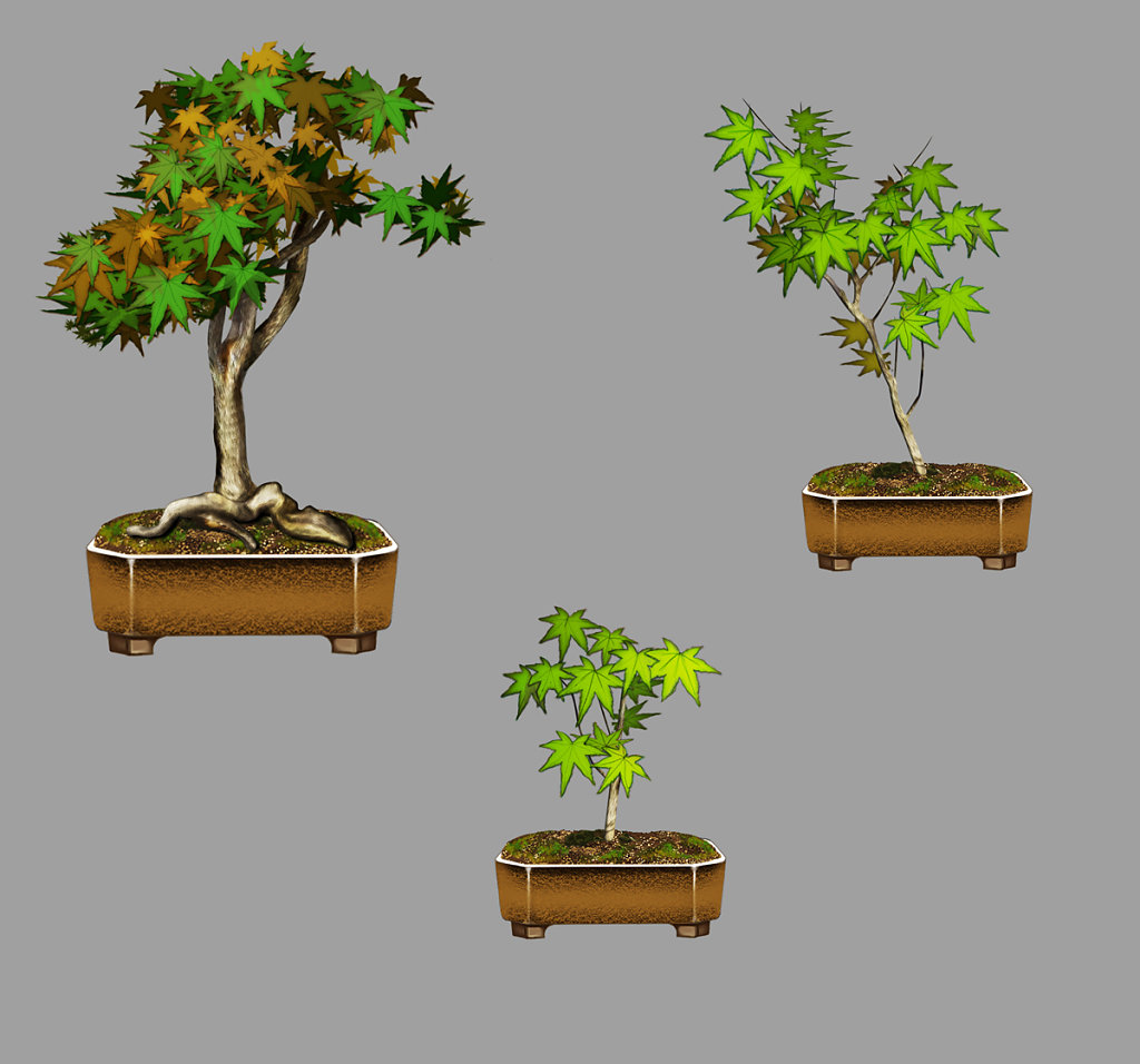 Bonsai illustration